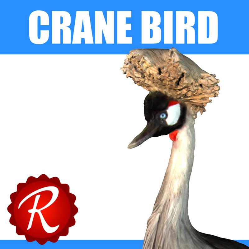 3d grey crane bird