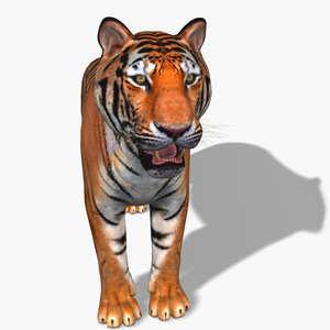 tiger fur 3d obj