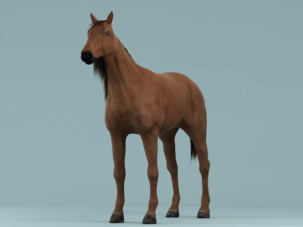 horse hair 3d model