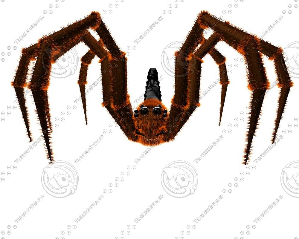 obj spider scorpion