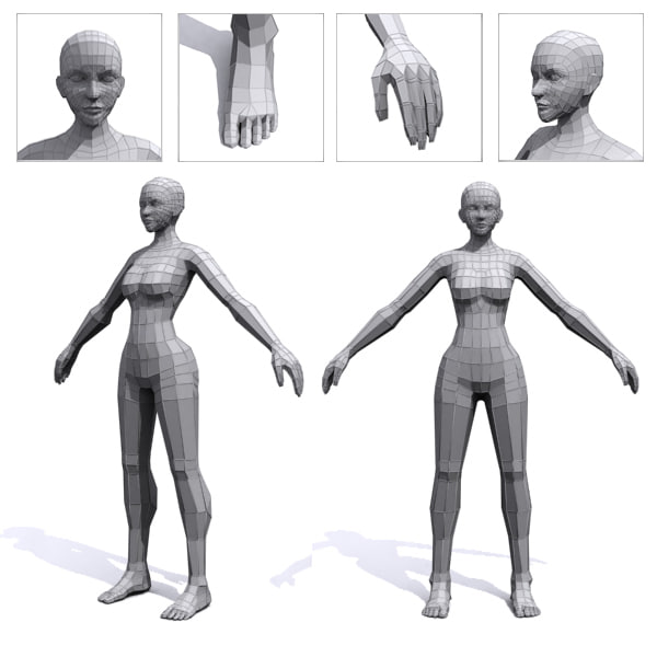 3d female base mesh human