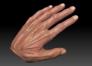 obj realistic male hand