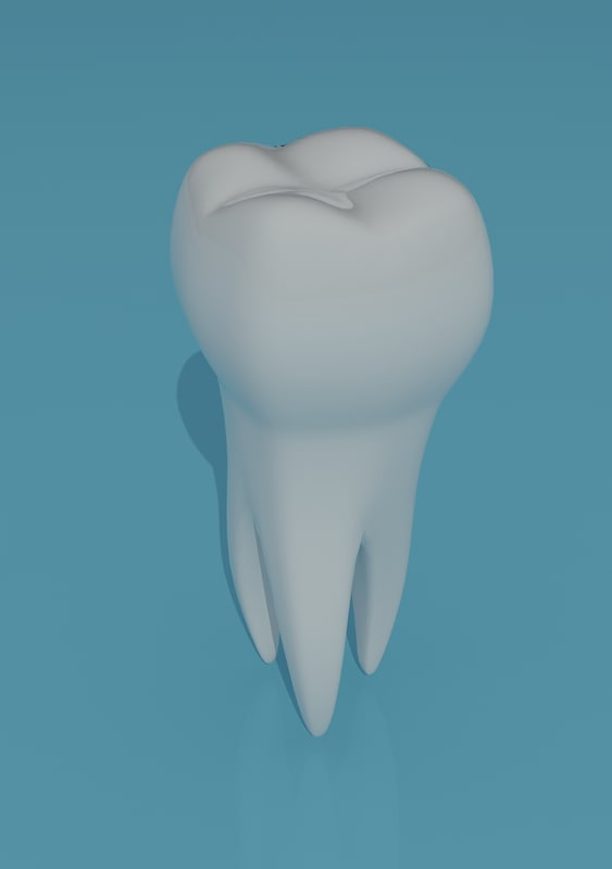 maya tooth