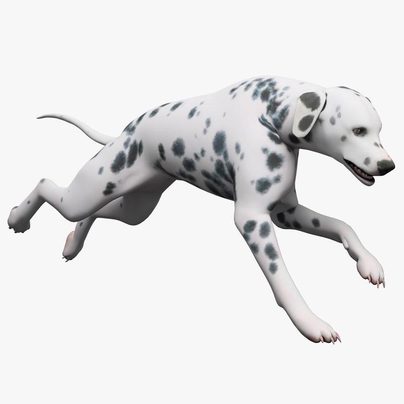 3d model of dalmatian dog pose