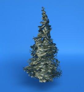 pine 3d model