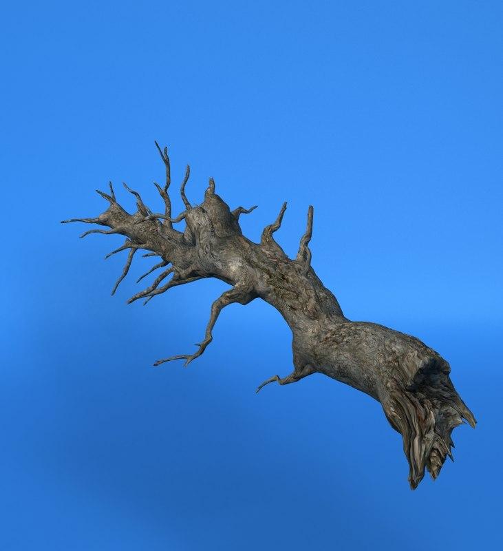 3d model old tree