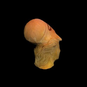 head statue athena 3d model
