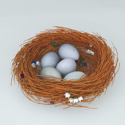 3d bird s nest model