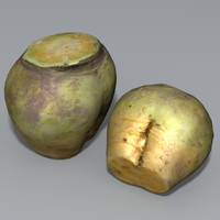 swede vegetable 3d model