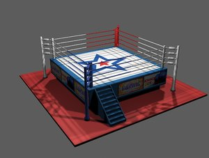 ring arena 3d model