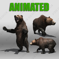 Grizzly Bear Animated