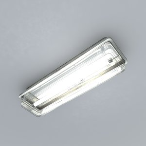 small roof light max