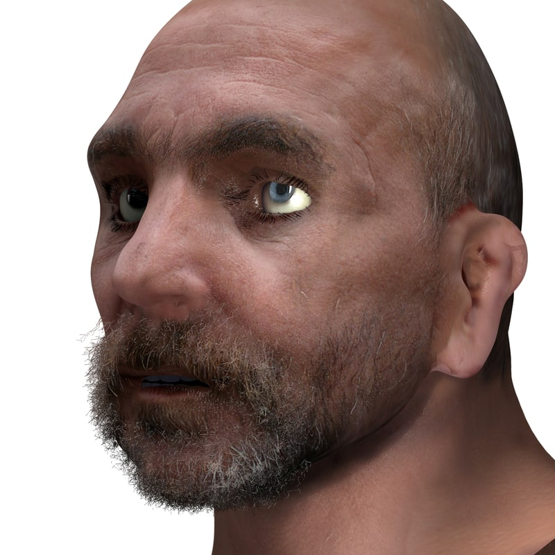 blend rigged male head