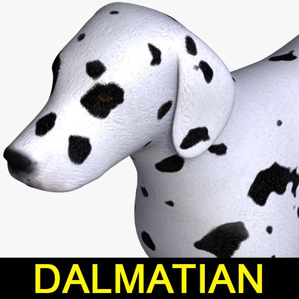 3d dog dalmatian