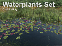 waterplants set c4d
