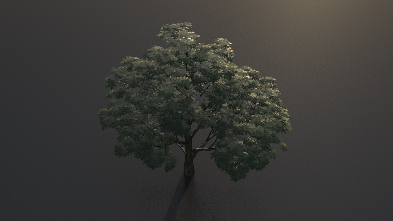 3d obj broadleaf leaf