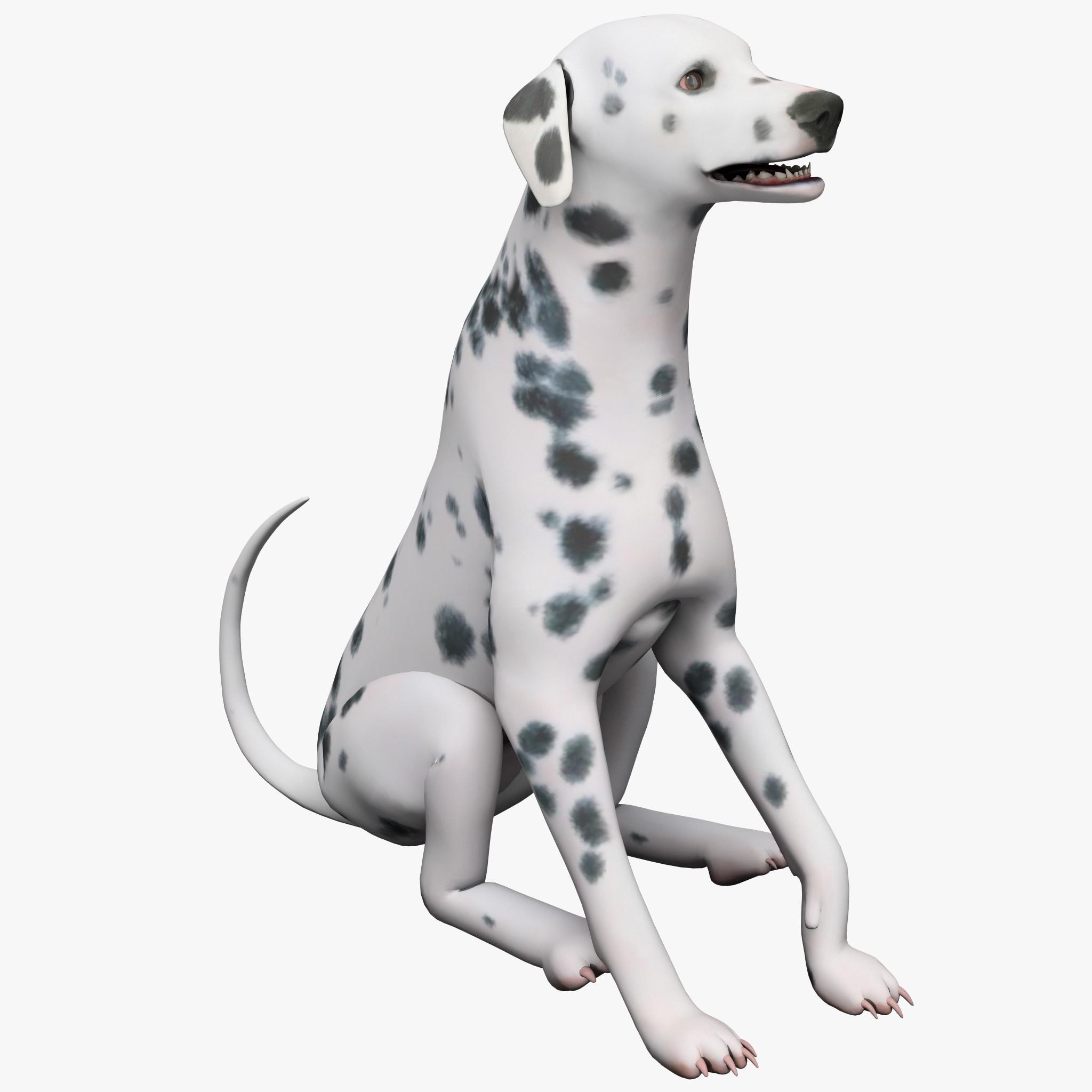 dsmax dalmatian dog pose