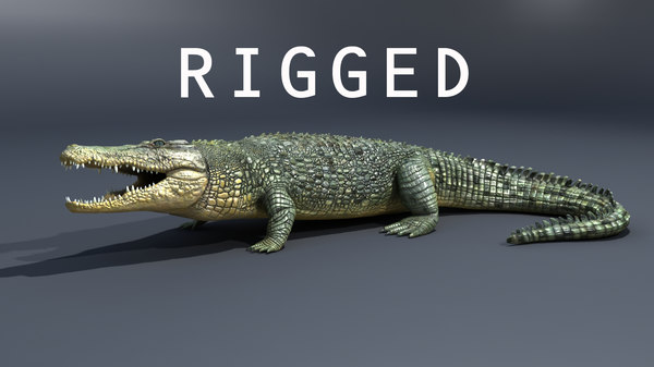 crocodile rig 3d max