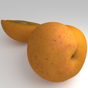 3d model apricots cutted