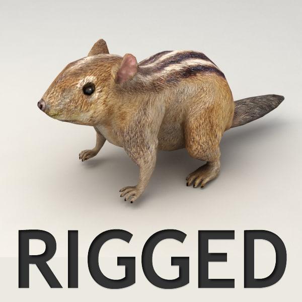 rigged chipmunk 3d obj