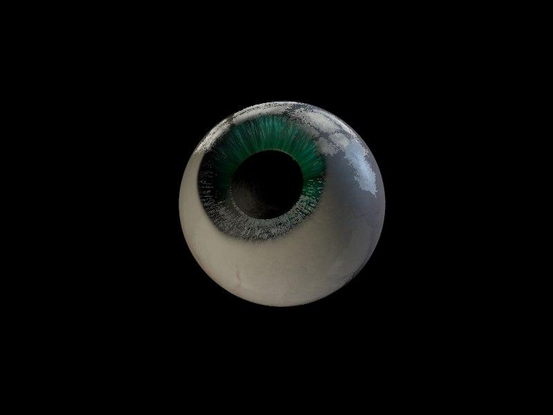 anatomically eyeball fully eye 3d model