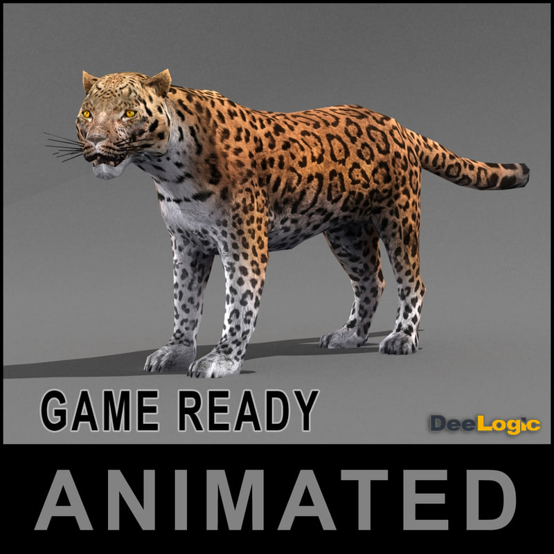 max leopard animations