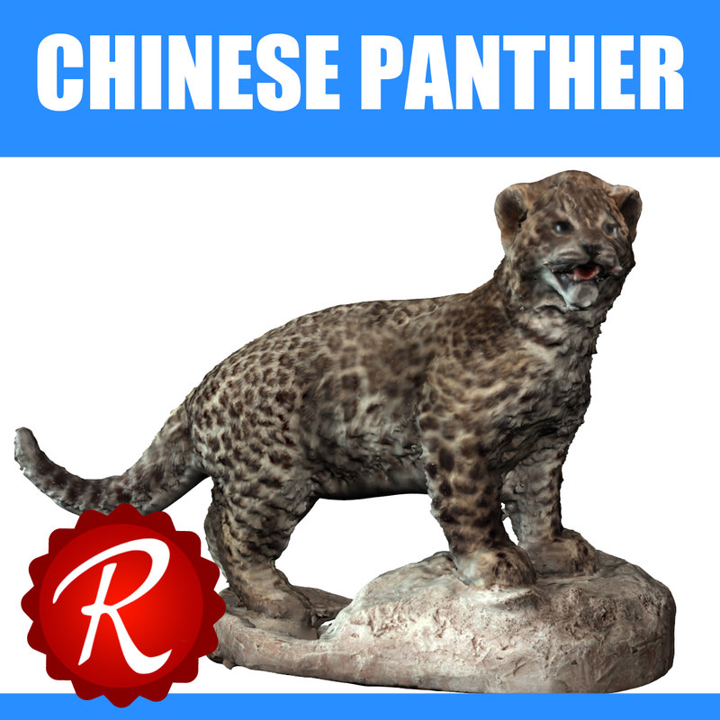 panther chinese 3d max