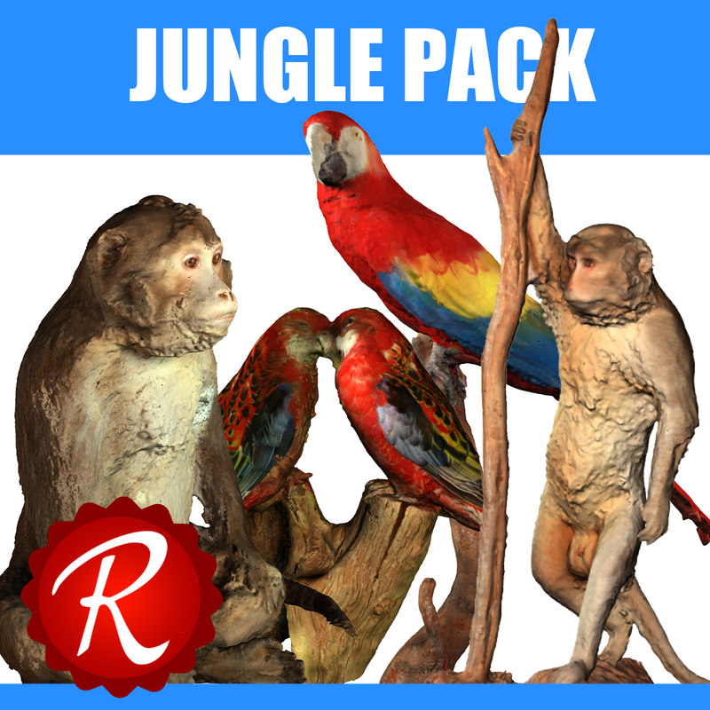 max jungle animals