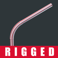 3d model of rigged straw