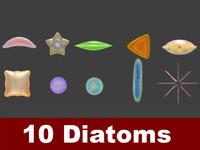 3d model 10 diatoms