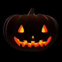 max posing halloween pumpkin