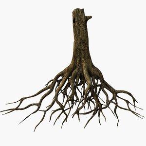 tree roots 3d model