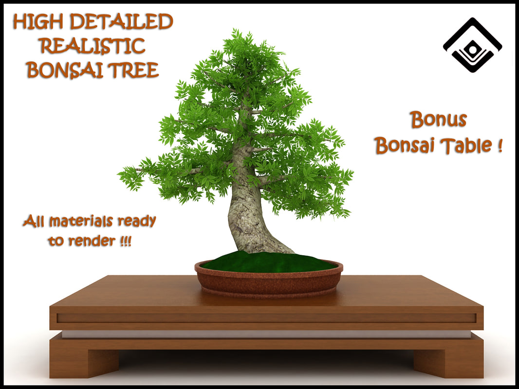 free 3ds model potted bonsai tree photorealistic