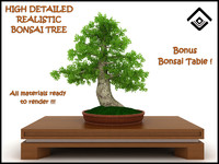 Photorealistic potted Bonsai Tree