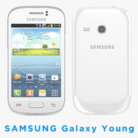 Samsung Galaxy Young S6310 Smartphone