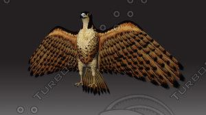 ma falcon