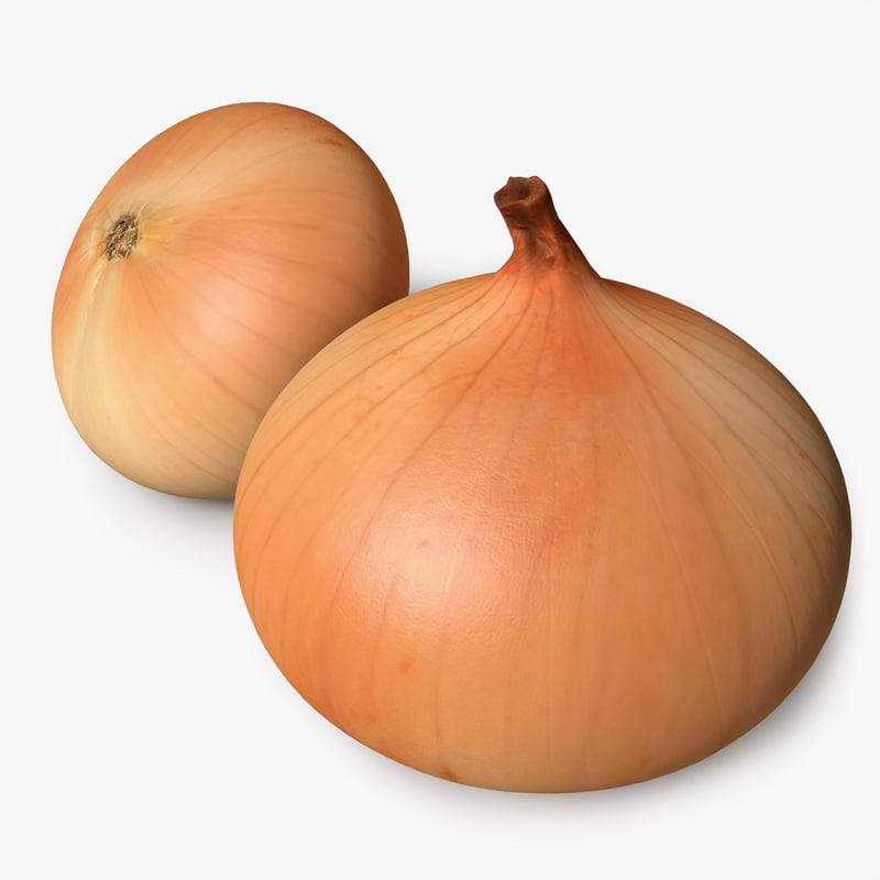 3d model realistic onion