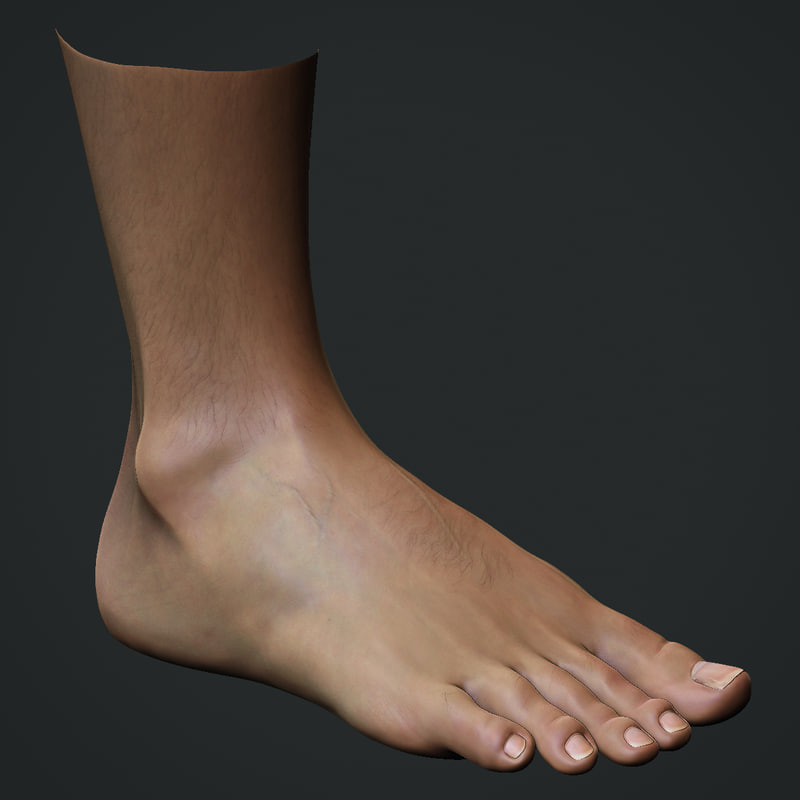 3d model realistic male foot
