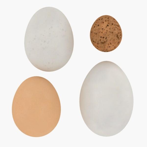eggs 3d max