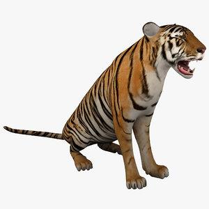max tiger 2 pose 3