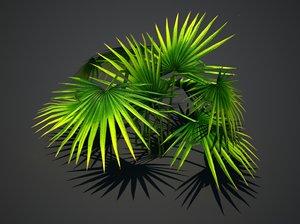 tropical plant 3d max