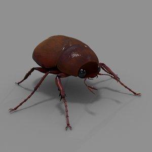 june beetle obj