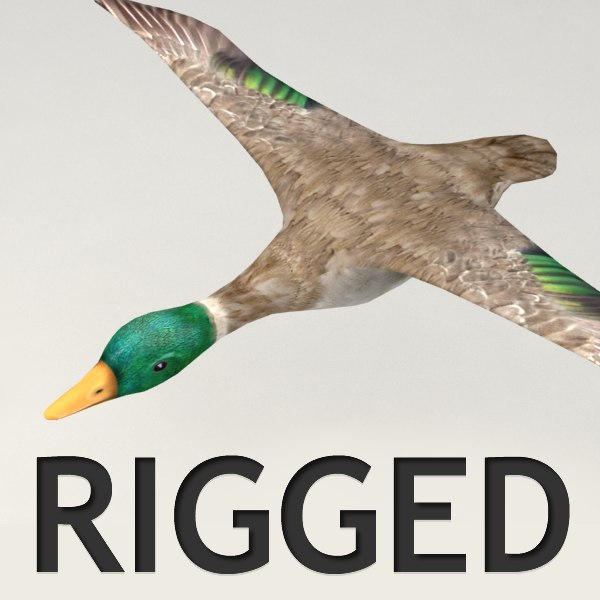 rigged flying duck 3d 3ds