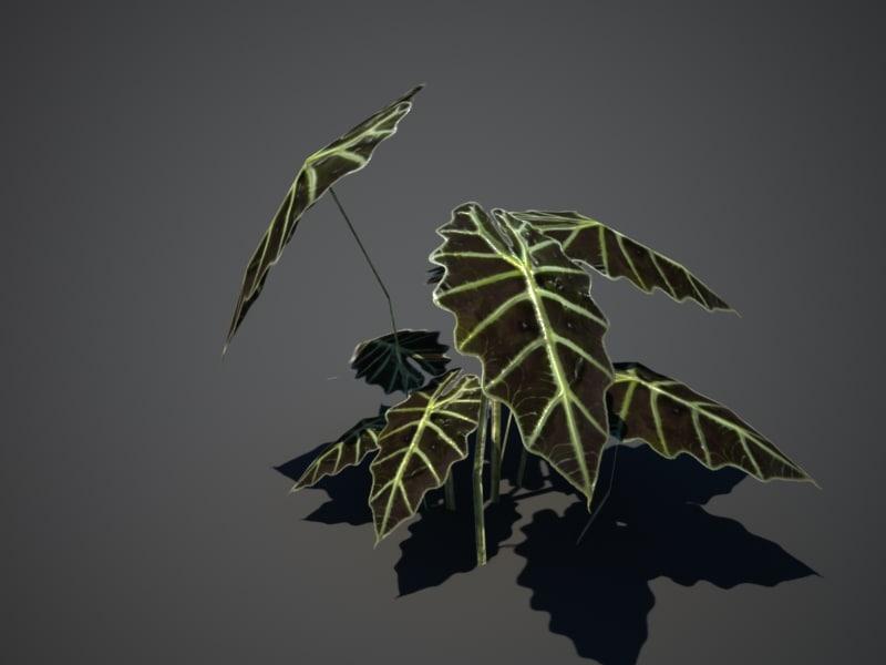 tropical plant 3d obj
