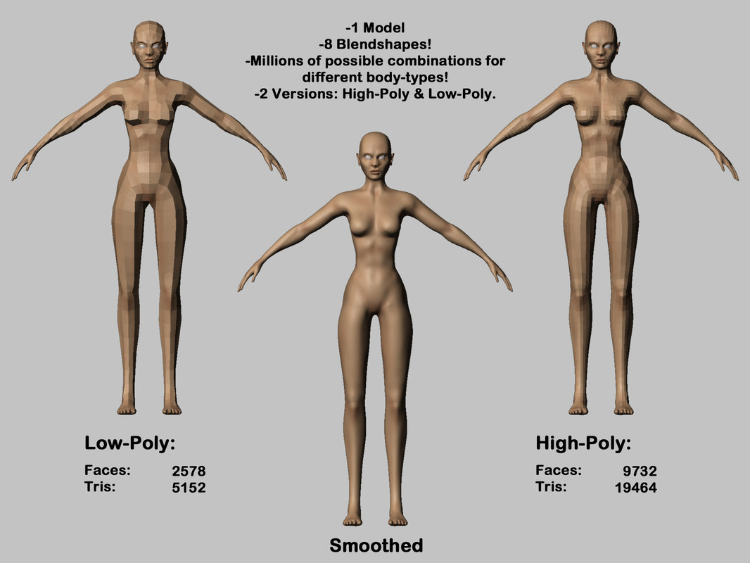Awesome Female Anatomy 3d Model Pictures - Physiology Of Human Body ...