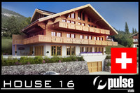 3ds max swiss house wood