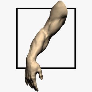 3d arm sculpt model