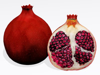 3d pomegranate