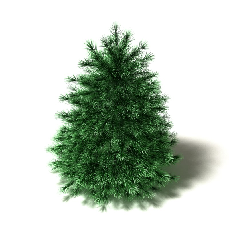 maya simplified pine tree