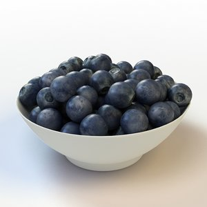 fruit blueberry 3d max